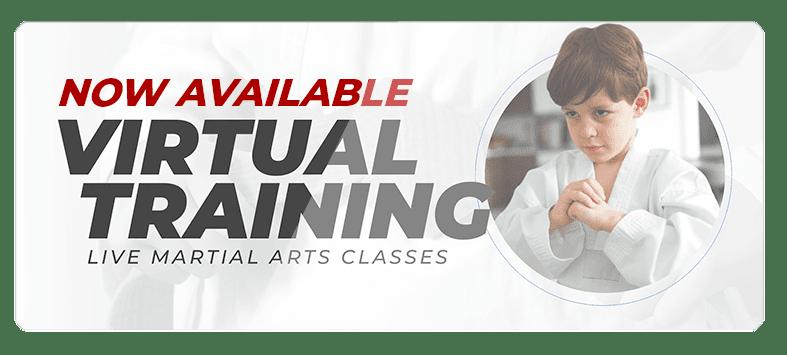 VIRTUALPOPUPSPARK.1.1, Cornerstone Martial Arts & Leadership Academy Arlington TX